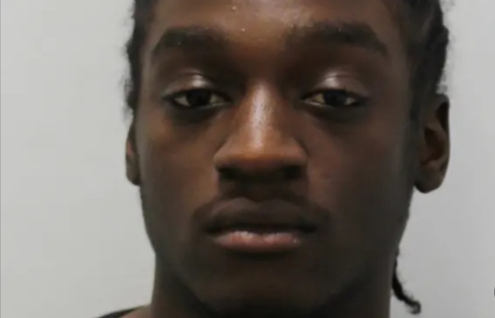 Croydon 'zombie knife' attacker jailed for three and a half years