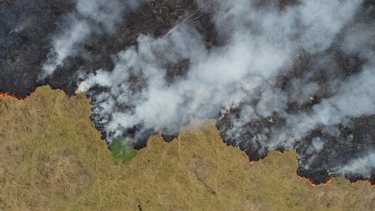 'Thanks, but no thanks': Brazil rejects Amazon wildfire cash